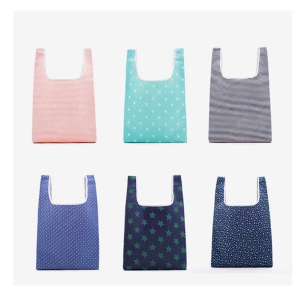 Reusable Shopping Bag (3)